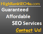 i need guaranteed effective seo services