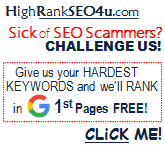 proof of guaranteed effective seo service NY